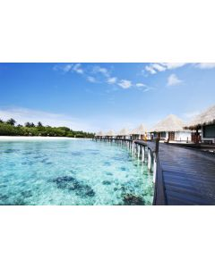 Surprise Maldives (Including Flights and Meals)