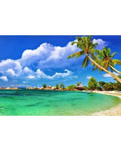 Matchless Andaman - Honeymoon Special